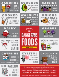 Poisonous Food Chart