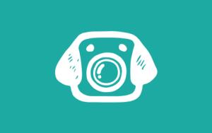 barkcam-logo-430x270