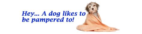 doggiepamper