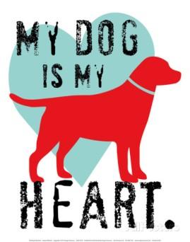 dog heart'