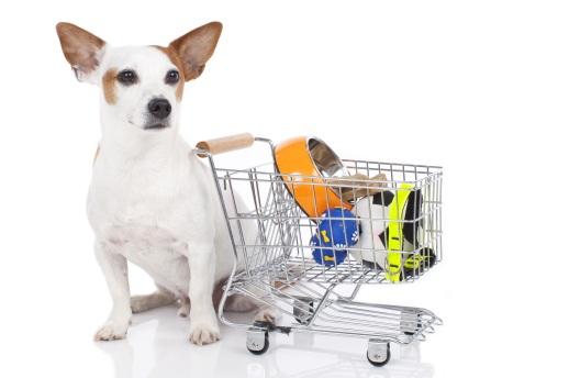 dog-shopping
