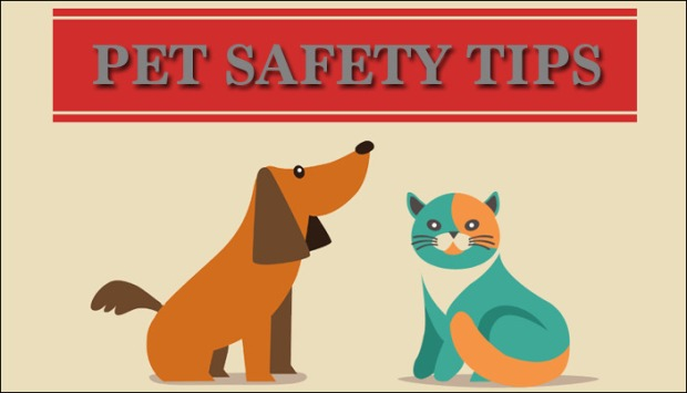 pet_safety_page_header.jpg